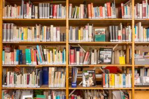 GoaDienstag-Bibliothek54