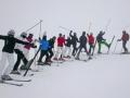 ski2-ds